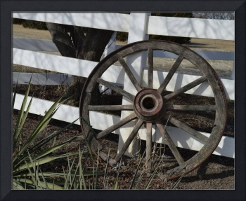 Wagon Wheel DSC_0403 (2)