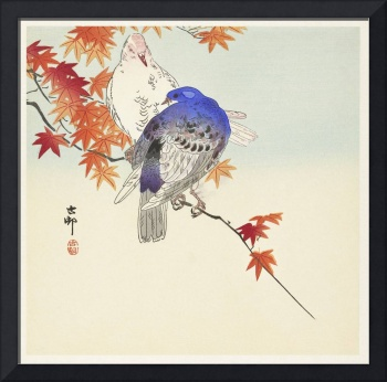 Two Pigeons on an Autumn Branch by Ohara Koson