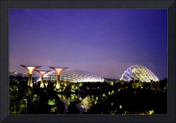 Garden by the Bay Singapore evening (MUST BUY !)