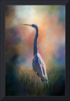 Blue Heron in the Marsh