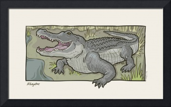 Florida Critter: Alligator