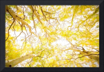 Golden Forest Canopy Van Gogh Style