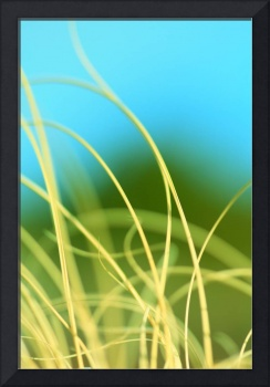 Macro Graphic Grass Green