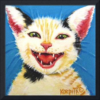 One Cat Laughing - Funny Feline Kitty Cats