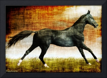 Horse of the Guge kingdom. 2012 80/56 cm.