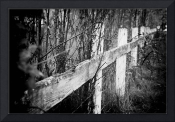 Black and White Fence, Holga Style
