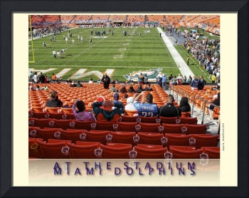 NFL Football Stadium - Miami Dolphins