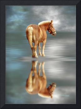 Draft Horse Water Reflection by Robin Amaral