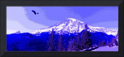 American Bald Eagle Over Mt. Rainier