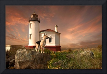 Cody at The Coquille River Lighthouse