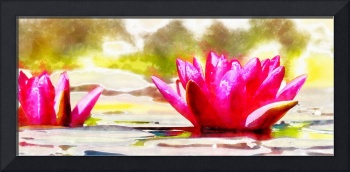 Water Lily - ID 16235-220301-1625