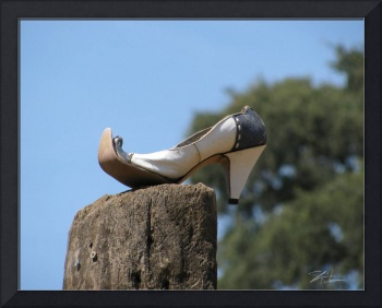 Lady's Shoe on a Stump