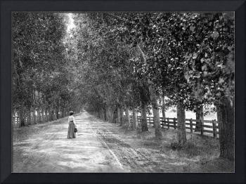 Woman Walking on Brokaw Road, San Jose • c1890