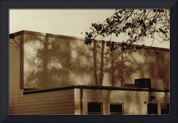 shadow movie on office building