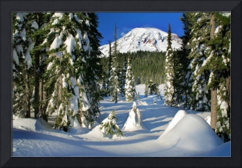 Mt Rainier From Reflection Lakes In Winter