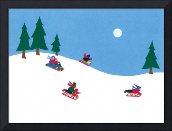 Sledding at Siwanoy