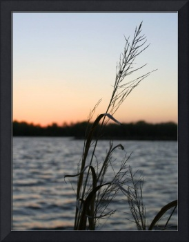 Sunset grass at Little Dixie Lake