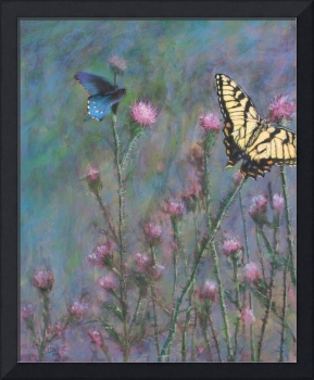 Butterflies on Cold Mountain