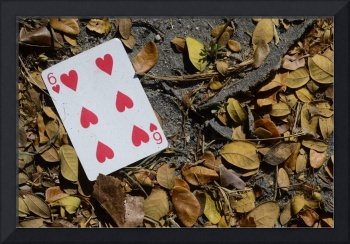 6 of Hearts #1