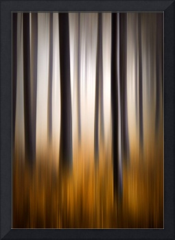 Forest Essence - Autumn Landscape Vertical Panning
