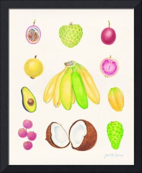Tropical Fruit II