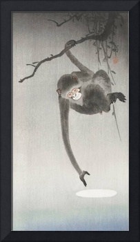 Monkey and Moon Reflection by Ohara Koson