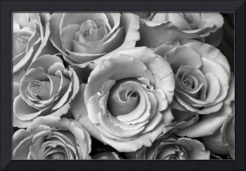 Rose Bouquet in Black and White