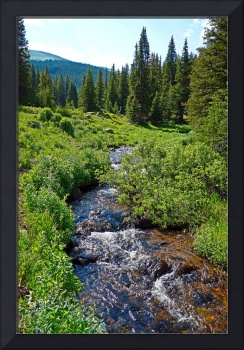 South Fork Ranch Creek Colorado