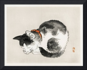 Sleeping Cat by Kono Bairei