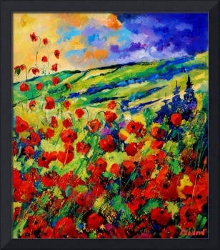 red poppies 78