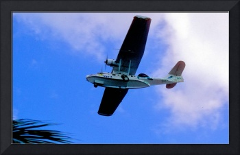 Turtle Catalina N222FT