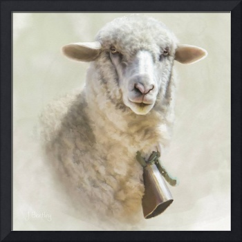 The Sheep With the Bell