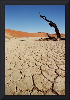 Parched Earth of Dead Vlei