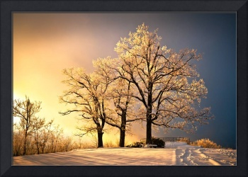 Luminous - Blue Ridge Winter Sunset