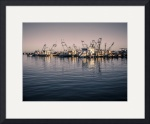 Shrimp Boats, Rockport, Texas by Dave Wilson