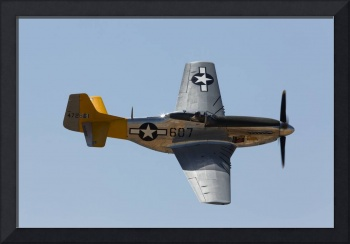P-51 Spam in the Can