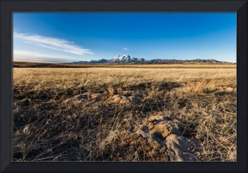 Grassland with mountain background