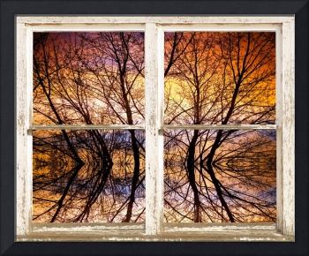 Sunset Tree Silhouette Colorful Abstract Picture