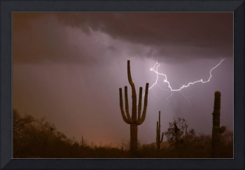 Saguaro Southwest Desert Lightning Air Strike