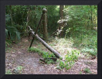 Large iron anchor in a jungle