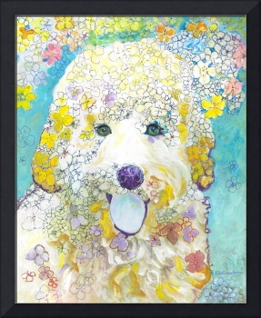 Velma the  Labradoodle Flower Dog