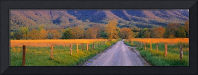 Road at Sundown Cades Cove Great Smoky Mtns Natio