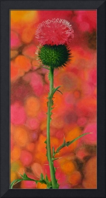 Realistic Thistle