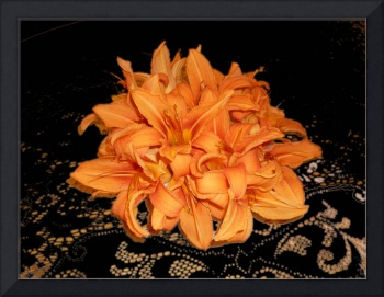Cluster of Orange Day Lilies on Black Lace
