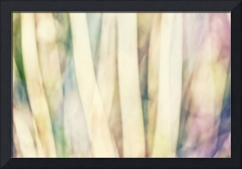 Pastel Forest Wild Grasses Photographic Abstract
