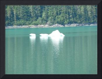 Iceberg Near the Mouth of Tracy Arm Fjord