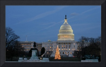 US Capitol Building and nation Christmas tree