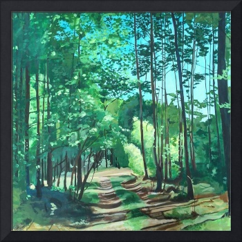 Road through the forest #3