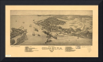 1884 Cedar Key, FL Bird's Eye View Panoramic Map