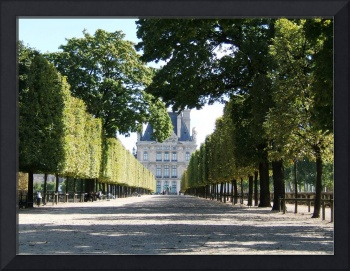 Louvre Garens, Tree Lined Path